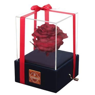 نمایش تصویر جعبه موزیکال هدیه به خانم ها گل بچین